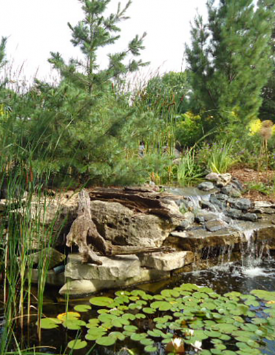 residential tree planting, tree services, lawn care, pond and water features landscaping company in Wisconsin